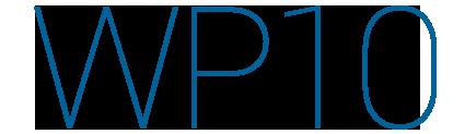 wp10 Management Structure
